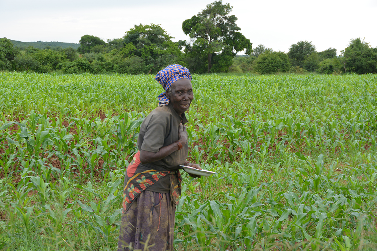 Malawi: Protecting Women from Illegal Land Seizure
