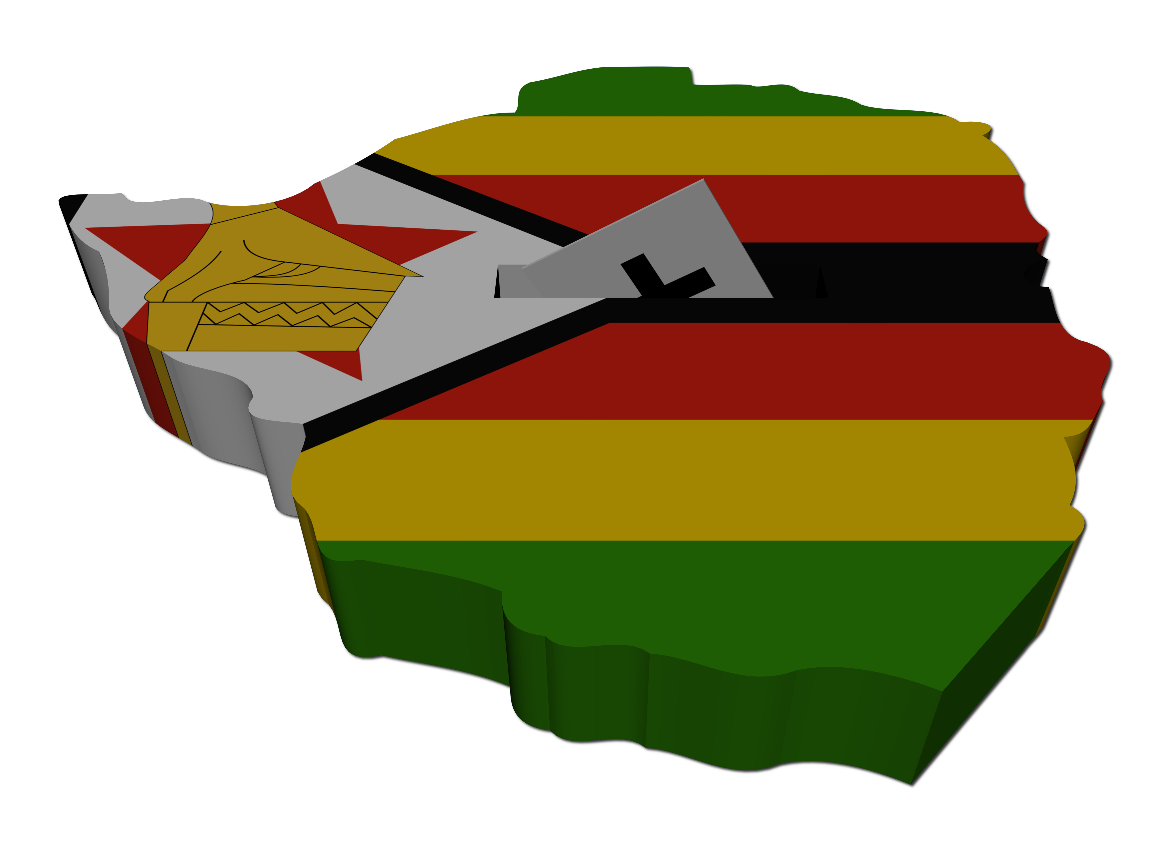 SALC in the News: It is a tragedy that Zimbabweans outside the country will not vote on 30 July