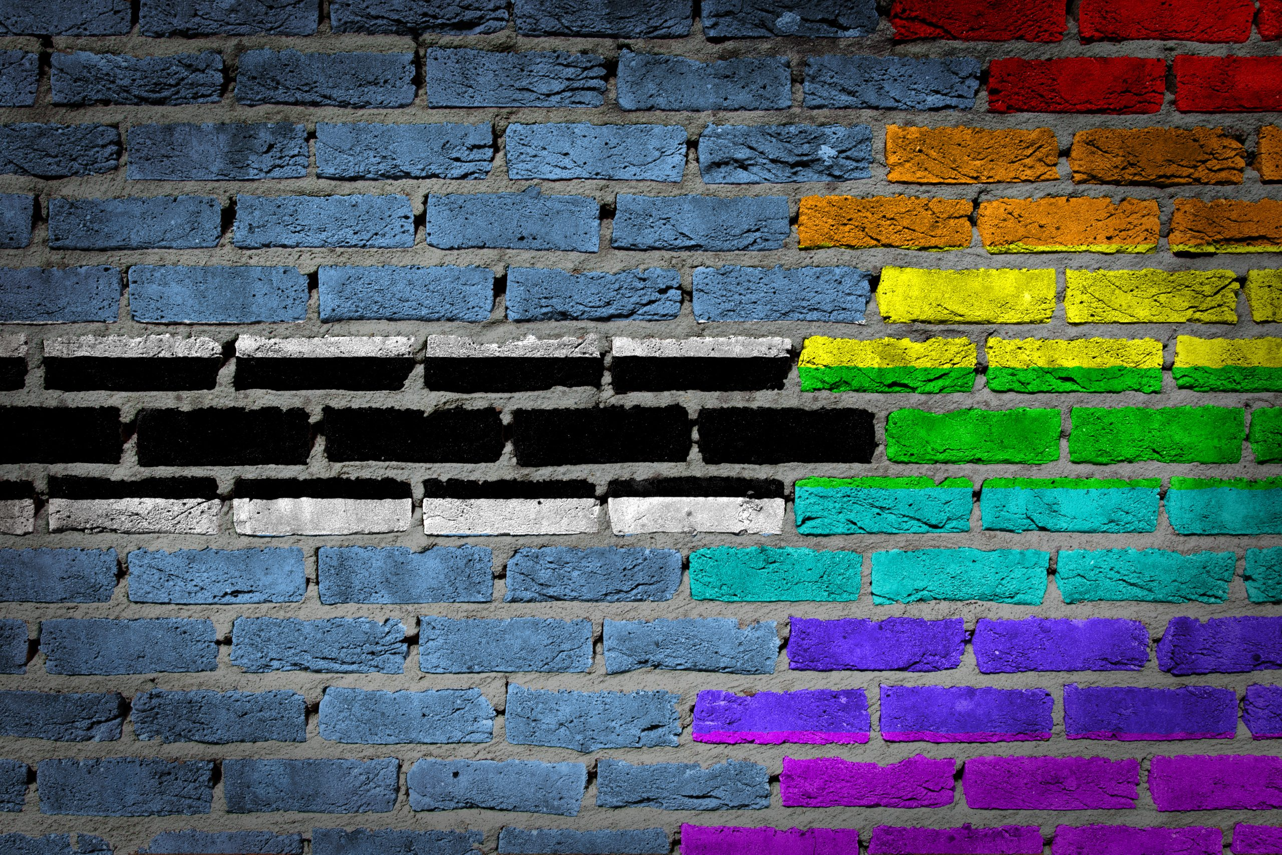 Report: Legal Gender Recognition in Botswana